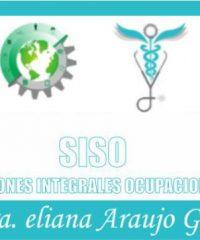 SISO, Soluciones Integrales Ocupacionales S.A.S.